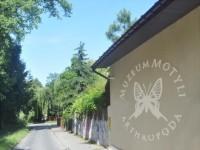 Muzeum Motyli Arthropoda, Bochnia
